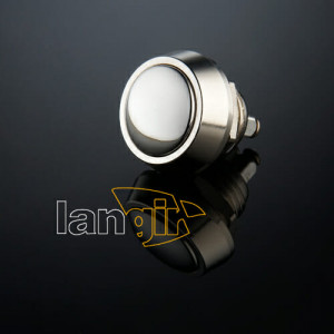 V12 Anti vandal switch